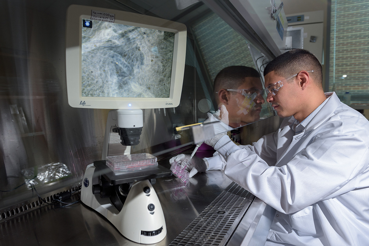 A student in a lab coat works with in a laboratory fume hood.