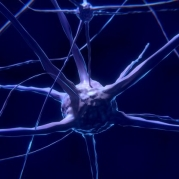 Stanley Named Founding Director of McCamish Parkinson's Disease Innovation Program