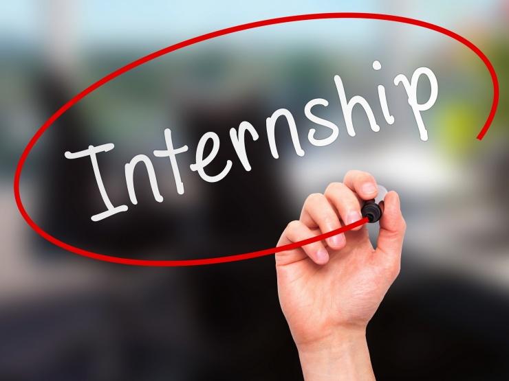 Petit Institute Unveils New Internship Program