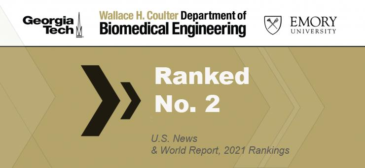 Biomedical Engineering Vaults to No. 2 in U.S. News Undergraduate Rankings
