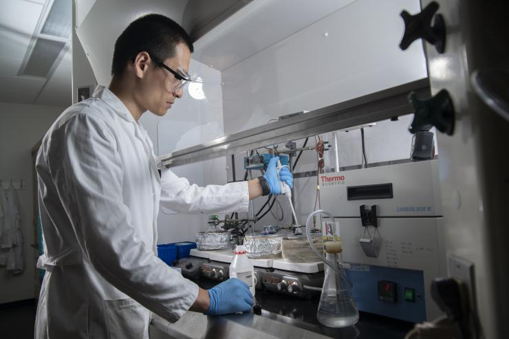 Selenium Anchors Could Improve Durability of Platinum Fuel Cell Catalysts