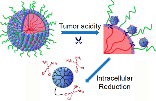 Nanoparticles deliver anticancer cluster bombs