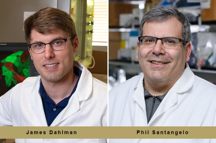Dahlman and Santangelo Awarded $3.5M NIH Grant to Develop a New mRNA-based Drug that Corrects DNA in Genes