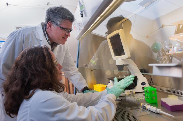Georgia Clinical & Translational Science Alliance Receives $51 Million NIH Grant