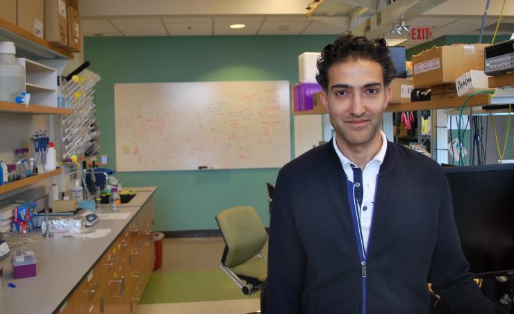 Haider Named Sloan Fellow