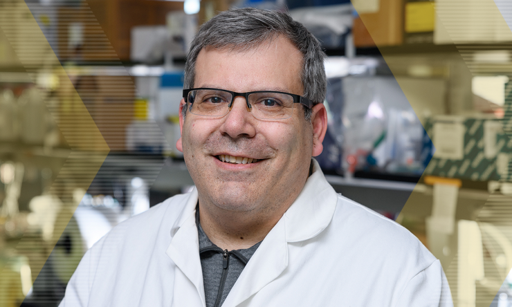 The Next Frontier in Bioengineering