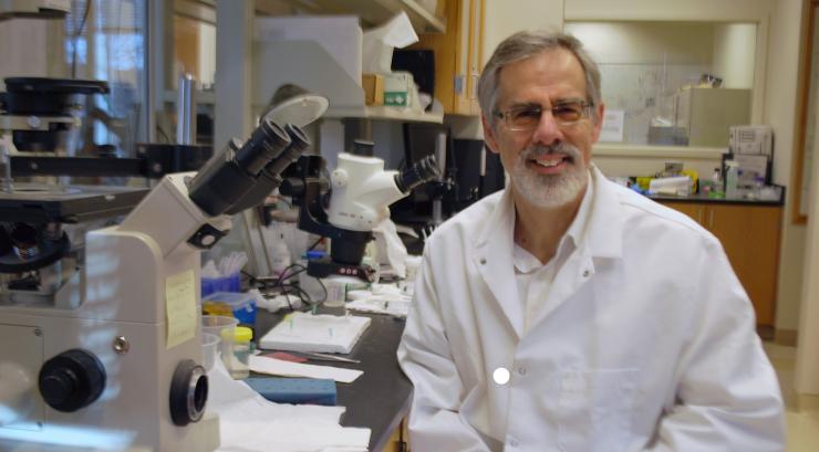 BME/Petit Institute Researcher Ross Ethier Targets Glaucoma Risk Factors