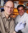 Garcia Lab Research ft. in Science Translational Medicine Journal