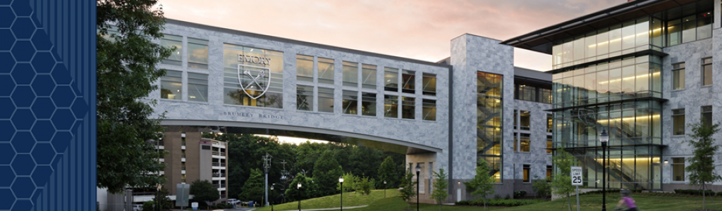 The Wallace H. Coulter Department of Biomedical Engineering at Georgia Tech and Emory